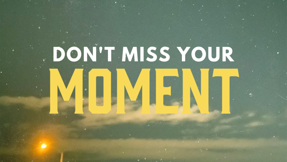 Don\'t Miss Your Moment